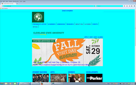 A web page displaying with an intense cyan color to its background. Images appear to be in their original colors, but the text links appear shifted to a brighter and darker blue.